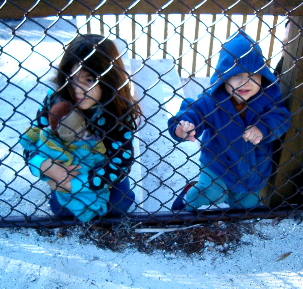 girls behind fence