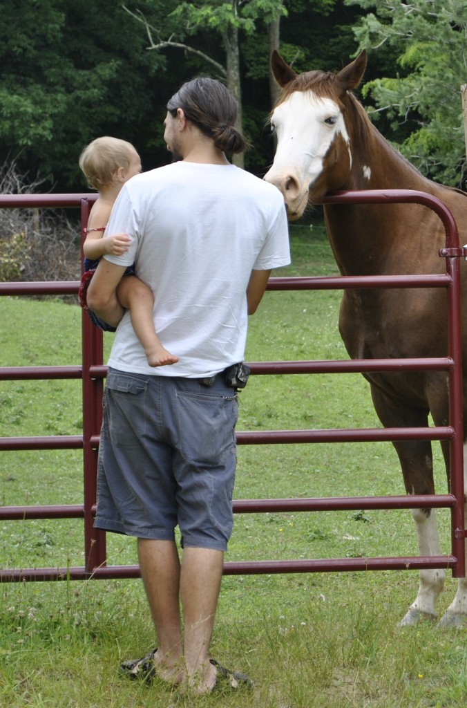 David and Annabelle meet a horse